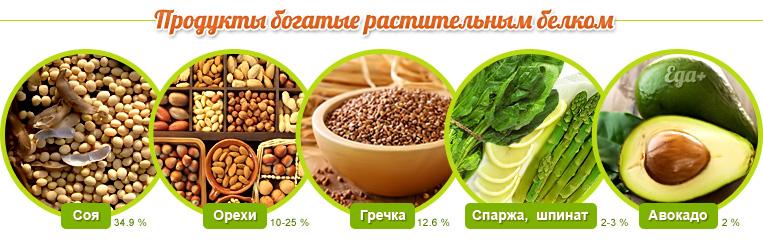 Продукты богатые растительным белком