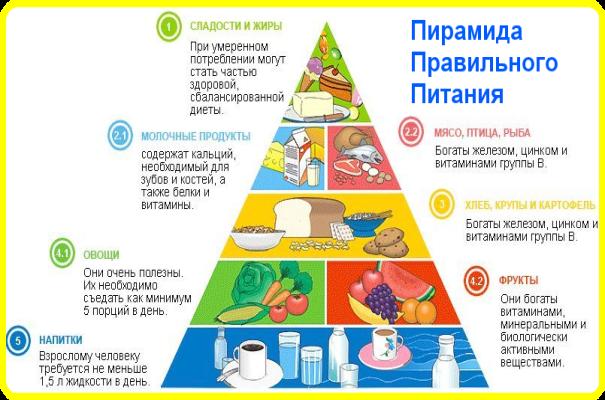 MyPyramid – обновленная пирамида